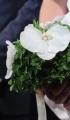 Στολισμός Γάμου με βασιλικό και ορχιδέες 